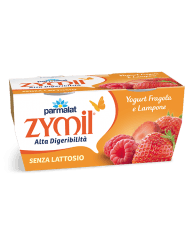 Yogurt Zymil Fragola e Lampone